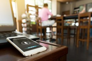 voice-search-wisconsin-google-partner